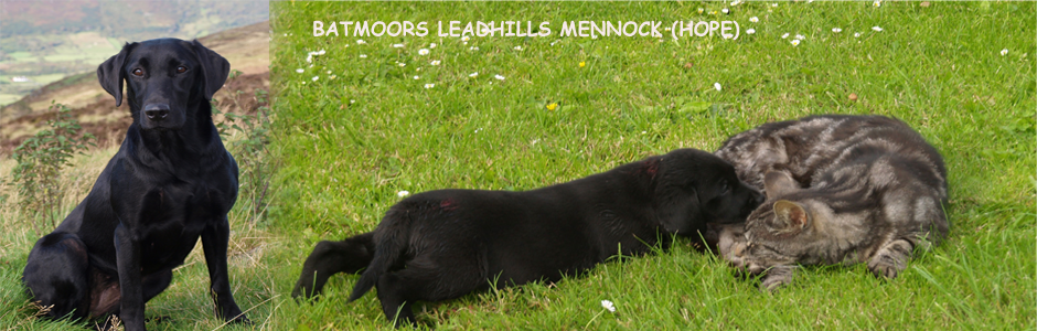 Batmoors-Leadhills-Mennock-